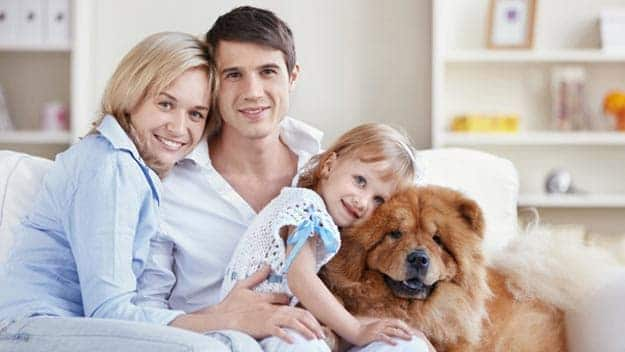 Wills & Trusts dog-young-family Direct Wills Stratford New Town